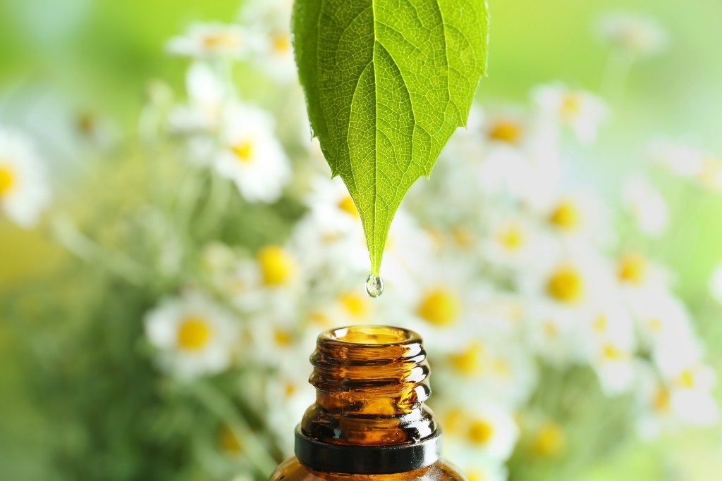 homeopathy, leaf extract